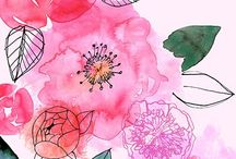 Watercolor illustrations / by Sue Carter