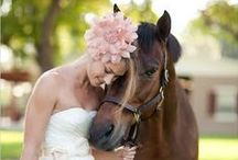 Horse & Wedding inspiration