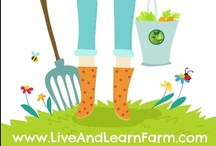 Live and Learn Farm