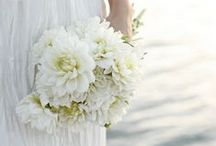 BOUQUETS | BLANC / Classic white bouquets / by S.Marie Zins