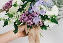 BOUQUETS | VIOLET / Lavenders, Lilacs, cool blues, rich warm purples and deep violet tones / by S.Marie Zins