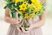BOUQUETS | SOLAR / Lemons, peaches, golds and and all shades of hot orange sunshine  / by S.Marie Zins