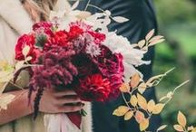 BOUQUETS | SCARLET / Red Hot / by S.Marie Zins