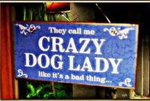 Pawsitive Luv! / I'm a big Dog Lover and called the Crazy Dog Lady by those who know me! / by Yve     C. Hancock
