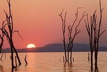Zambia / Travel inspiration for your next holiday to Zambia - from Freedom Africa