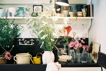 Home Inspiration / by Meghan Medlen