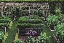 Useful Beautiful Backyard / by Heather Brinkschroeder
