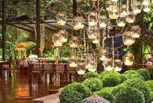 Garden Lighting / We love how lighting can bring your garden to life at night time.