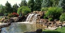 Water Features / When the stress and pressures of daily life get you down, our ponds and waterfalls offer the body and mind an oasis in your backyard! Let us help you plan the perfect paradise.