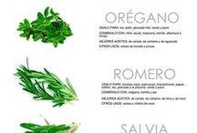 Guía de hierbas para cocinar