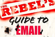 The Rebel's Guide to Email Marketing / http://ar.gy/rebelsguide  The book I wrote with Jason Falls!