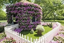 Garden and Yard Ideas.... / by Patty