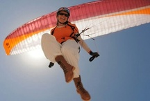 Paragliding / by Web Agency Studio