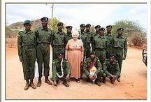The DSWT // Anti-Poaching / by David Sheldrick Wildlife Trust