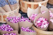 flower power / by Emma Franklin