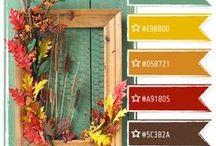 Color Palettes / Color palettes and color combinations. / by Annie Howes