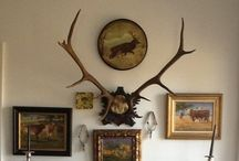 Year of the Antler