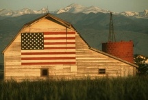 Barns / by B.J. Laird