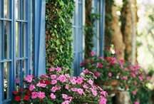 Window Boxes / Window Flower Boxes | Outdoor Window Decor