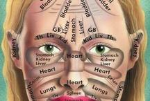 "Health, Massage / ""Manipulative medicine is no longer a taboo topic."" - Norton Hadler, M.D., professor of rheumatology, University of North Carolina Medical School at Chapel Hill / by Beverlee Orr-Shadbolt"