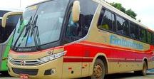X Brazilian Buses (011) / Brazilian City Duty Buses.
