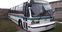 X American Buses (4) - City Serviçe / American City Service Buses.