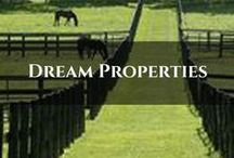 Dream Properties