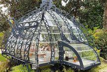 Glasshouse