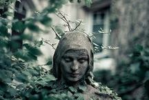 Garden Magick / by Medieval Muse