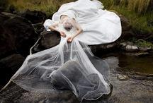 Brideutopia  / everybloocyweddingthing eu can imagine / by Emily Alviani