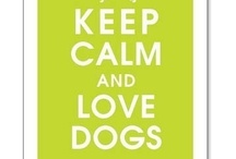 For the love of dogs / by Christine Merswolke