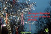 Navidad en Familia / Si hay una época familiar en el año, es sin duda la Navidad. En este tablero recogeremos imágenes para disfrutarla y vivirla de forma muy especial