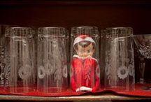 Elf on the Shelf / by Cynthia Burrell