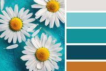 Color My World / by Vivina Gomez