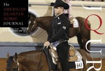 Horse Magazines / The American Quarter Horse Journal, the Q-Racing Journal and America's Horse magazines make up AQHA's collection of award-winning, informative publications. / by American Quarter Horse Association (AQHA)