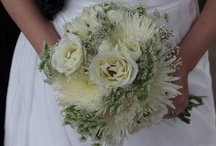 Dreamy Creamy Whites / by Lizzy's Bloomin' Flowers
