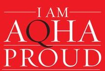 Your AQHA / The American Quarter Horse Association is all about its members. And we want our fans to know who we are, too. Consider this your behind-the-scenes look at everything #AQHA! We're #AQHAProud to serve you and our great #QuarterHorses. Learn more at http://aqha.com/ / by American Quarter Horse Association (AQHA)