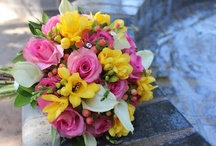 Brightly Colored Blossoms / by Lizzy's Bloomin' Flowers