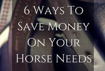 Easy Ways to Save Money: Horse Showing / Horse-showing expenses don't have to be a bear if you heed these thrifty tips from America's Horse Daily (www.americashorsedaily.com).