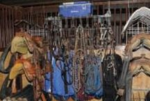 Horse Tack / The options for horse tack are about as versatile as our American Quarter Horses. Here, you'll find a variety of helpful horse-tack information that'll make the fitting and purchasing process easier. Spend less time shopping and more time riding! #horsetack / by American Quarter Horse Association (AQHA)