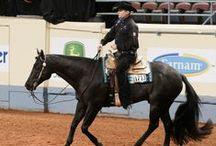 AQHA World Show / Results, patterns and happenings from the AQHA World Championship Show / by American Quarter Horse Association (AQHA)