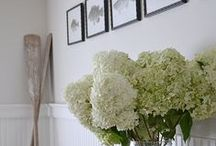 I feel like I need a hydrangea board!