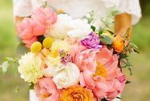 Wedding Ideas / by Jodi
