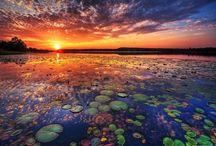 SUNRISE SUNSET / by Missy Christensen