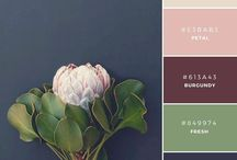 Wedding Ideas: Color Palette / Find the right color combinations for your wedding day.
