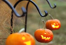 •halloween• / by {shanda}