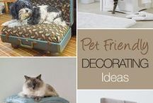 Kitties and Pets