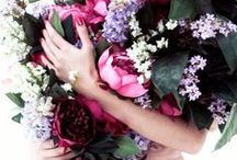 Flora  / …flowers... / by Petit Vour