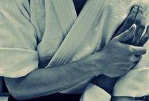 aikido. samurai spirit.