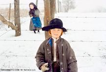 COOKING:  Amish